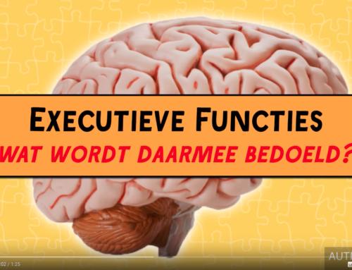 Wat zijn Executieve Functies?