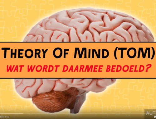Wat is Theory of Mind?